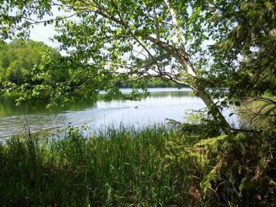 Photo of ON Murphy Lake Rd, Presque Isle, WI 54557