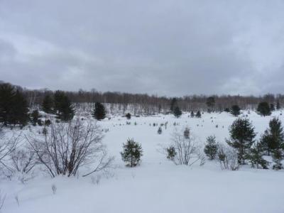 Photo of Lot 4 Tadpole Ln, Plum Lake, WI 54560