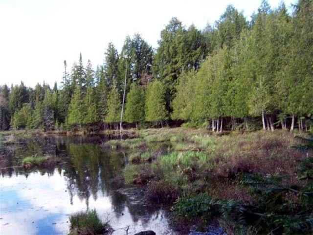 Lot 4 Cisco Lake Rd E, Watersmeet, MI 49969