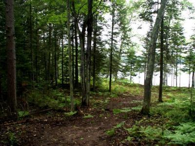 Photo of NEAR High Pines Ln, Boulder Junction, WI 54512