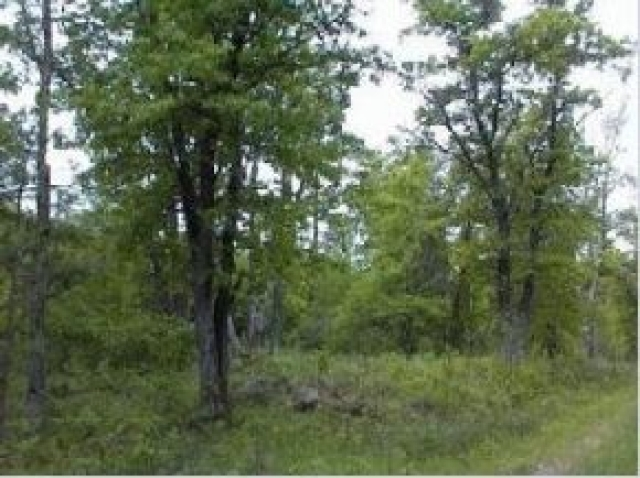 Lot 16 Wind Song Rd, Tomahawk, WI 54487
