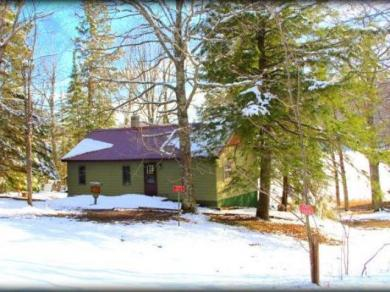 9159W Weber Lake Rd #+78acres, Upson, WI 54565