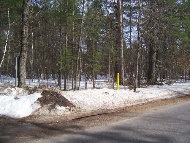 ON Snowshoe Ln #Lot 3, Land O Lakes, WI 54540
