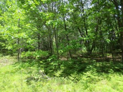 Photo of ON South Shore Dr, Rhinelander, WI 54501