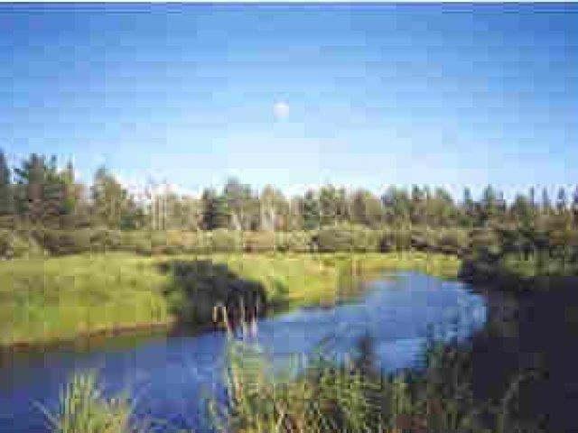 8540 Mercer Lake Rd, Minocqua, WI 54548