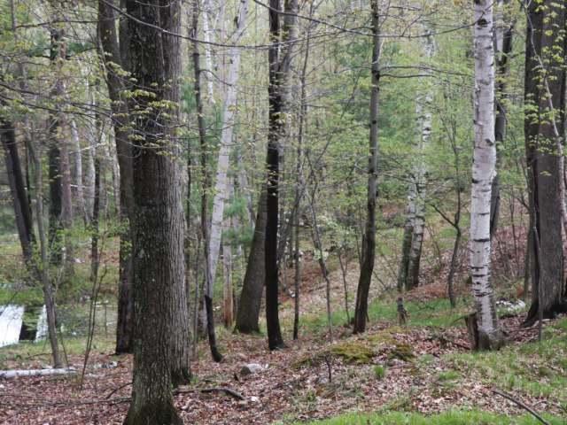 Lot 11 Oak Dr, Rhinelander, WI 54501