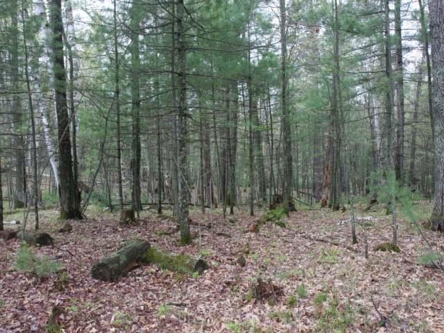 Lot 14 Oak Dr, Rhinelander, WI 54501
