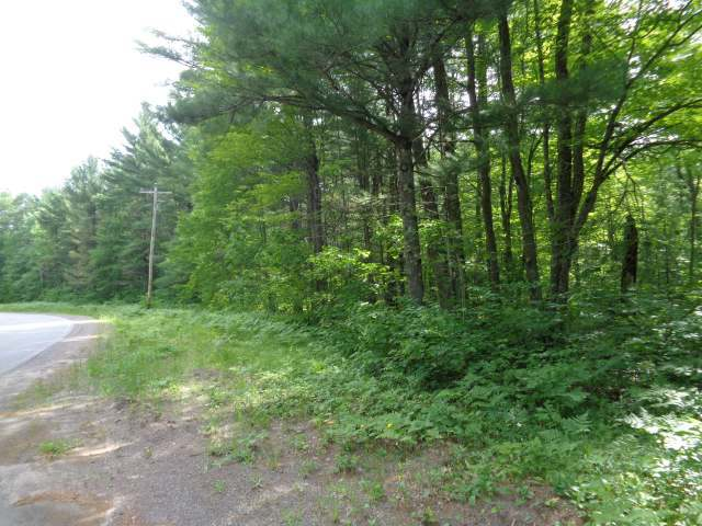 5 AC ON Plummer Lake Ln S, Lac Du Flambeau, WI 54538