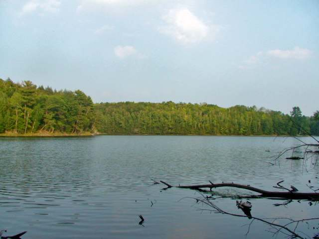Lot 19 Overlook Dr, Gleason, WI 54435