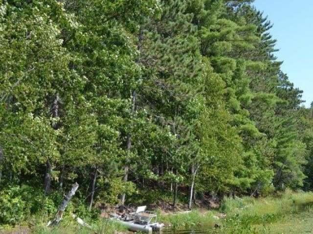 ON Currie Lake Rd, Rhinelander, WI 54501