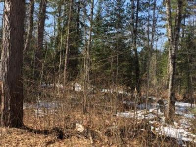 Photo of ON Pine Ln #Lot 7b, Boulder Junction, WI 54512