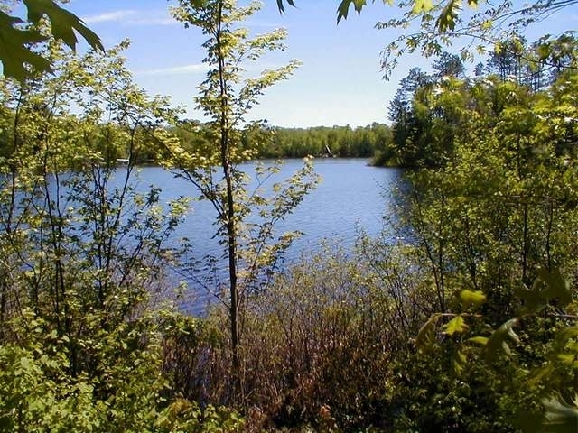 ON Lower Sugarbush Ln #20, Lac Du Flambeau, WI 54538