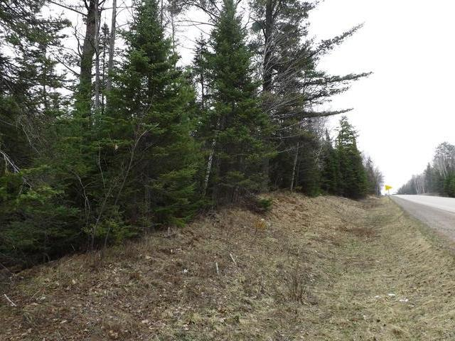 ON Hwy 17 #4 Acres, Sugar Camp, WI 54521