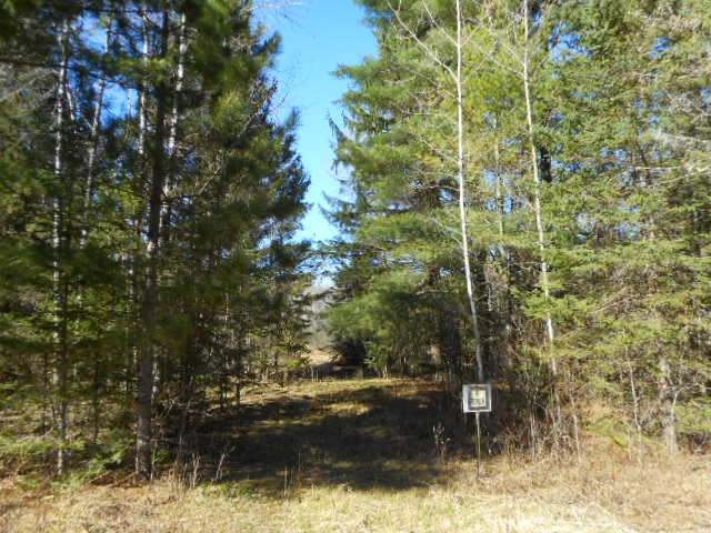 ON Hwy 52, Langlade, WI 54491