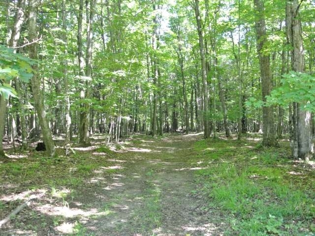 ON Connors Rd, Three Lakes, WI 54562