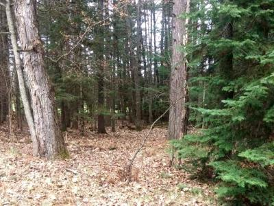 Photo of Lot #6 Mckinley Blv, Eagle River, WI 54521