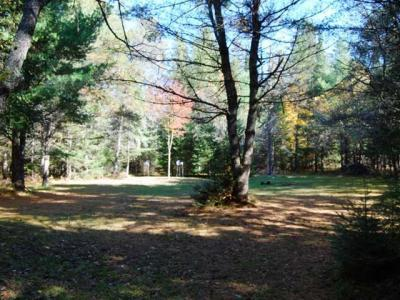 Photo of 6300 Boygan Lake Rd, Land O Lakes, WI 54540