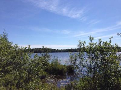 Photo of 5800 State Farm Rd, Three Lakes, WI 54562