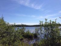 5800 State Farm Rd, Three Lakes, WI 54562