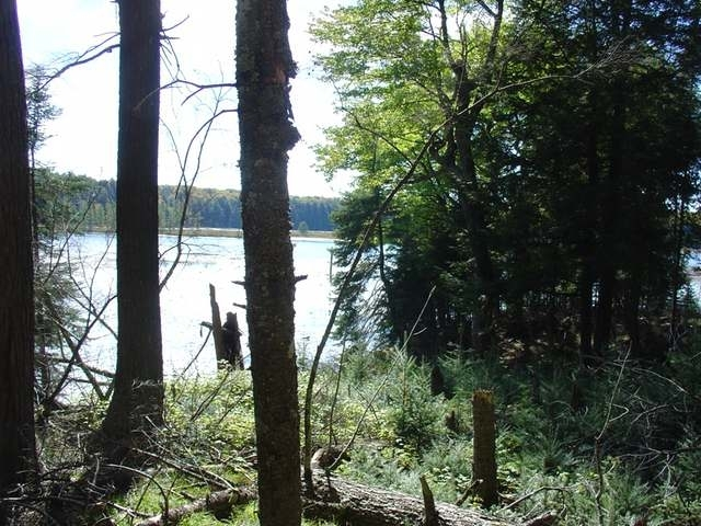 Lot #7 Channel Rd, Watermeet Mi, MI 49969