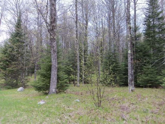 Lot 2 Timberline Rd, Mercer, WI 54547