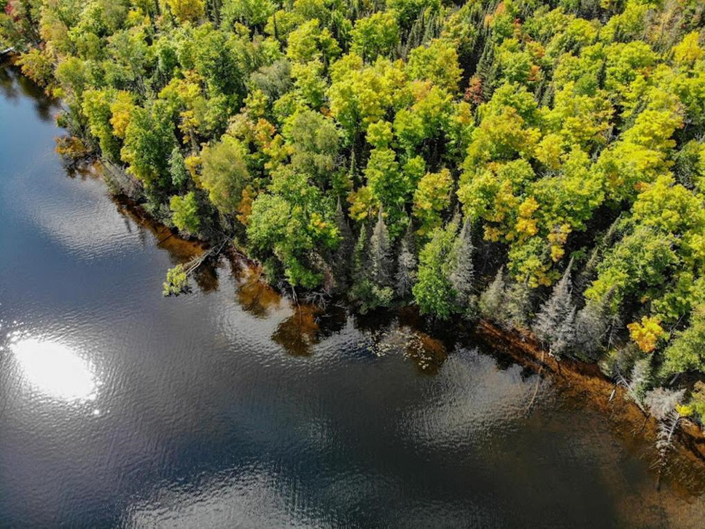 Lot 25 Harris Creek Ln, Winchester, WI 54557