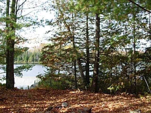 Off Of Cramer Lake Rd, Mercer, WI 54547
