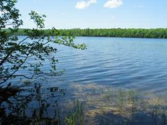 NEAR Smoky Lake Rd, Staumbaugh, MI 49935