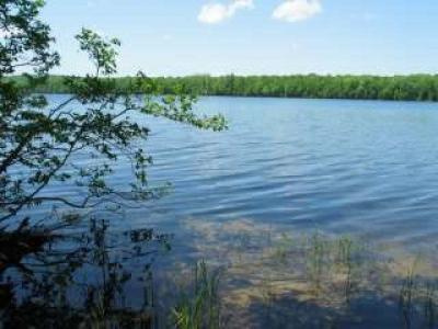 Photo of NEAR Smoky Lake Rd, Staumbaugh, MI 49935