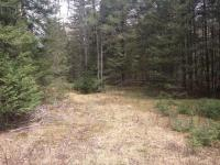 ON Thurber Tr #Lot 3, Eagle River, WI 54521