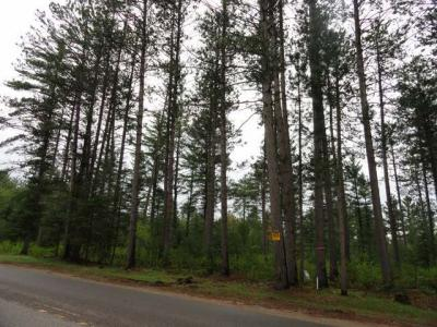 Photo of Off Cth N #Lot 1, Plum Lake, WI 54560