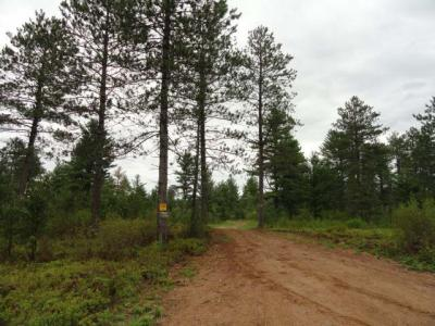Photo of Off Birch Spring Rd #Lot 2, Plum Lake, WI 54560