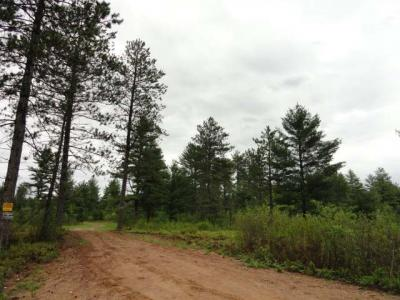 Photo of Off Birch Spring Rd #Lot 3, Plum Lake, WI 54560