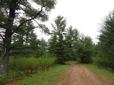 Photo of Off Birch Spring Rd #Lot 6, Plum Lake, WI 54560