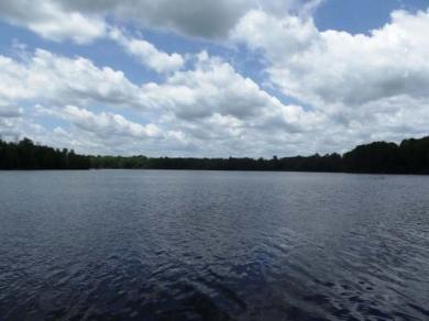 Lot 11 Lone Pine Rd, Fifield, WI 54524