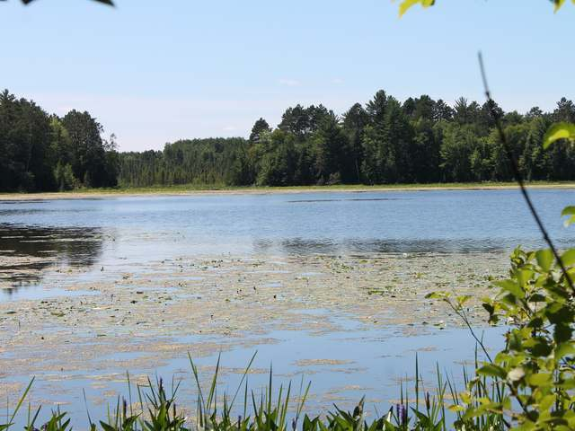 Lot 7 ON Sunny Point Rd, Tomahawk, WI 54487