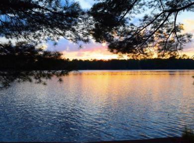 7231&38 Bonkowski Rd, Three Lakes, WI 54562