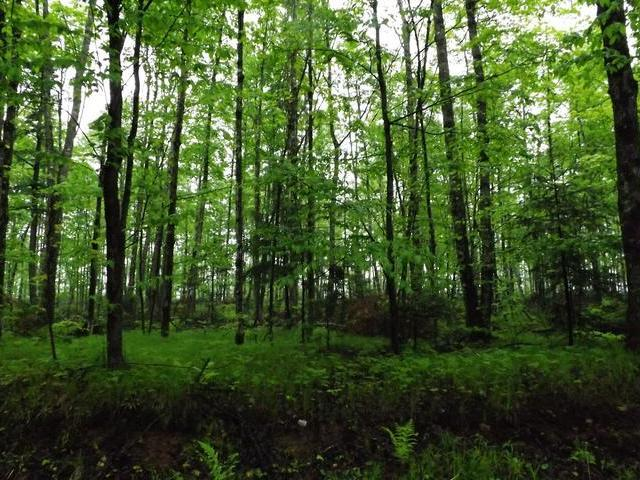 ON Military Rd #Lot 3, Eagle River, WI 54521