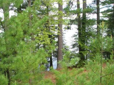 Photo of near7969 Four Mile Lake Rd, Three Lakes, WI 54562