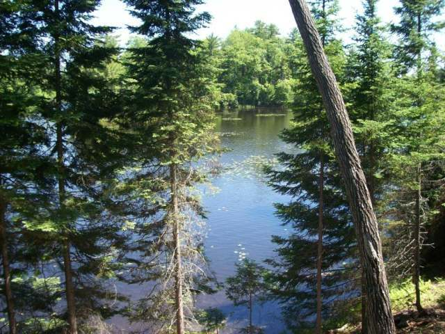 5606 Island Shores Ln, Manitowish Waters, WI 54545