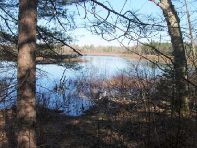 ON Turner Lake Rd E, Park Falls, WI 54514