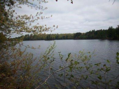 ON Mitten Lake Rd, Lac Du Flambeau, WI 54538