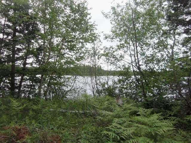 Lot20&21 Weber Lake Dr, Mercer, WI 54547