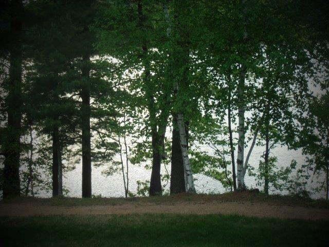 300 Brandy Point Dr #D29, Arbor Vitae, WI 54568