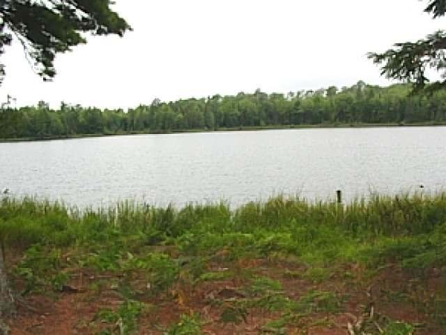 13002 Gretchen Lake Ln, Winchester, WI 54557