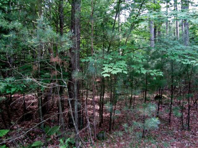Lot 23 Black Pine Ln, Minocqua, WI 54548