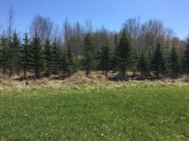 Off Midway Rd, Kennan, WI 54537