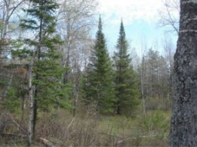 Lot 1 Dusty Rd, Rhinelander, WI 54529