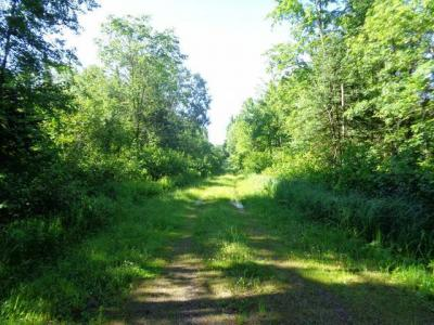 Photo of 500 AC Lost Rd, Tomahawk, WI 54487
