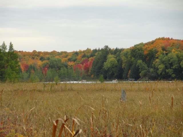 ON Amik Lake Ln, Lac Du Flambeau, WI 54538